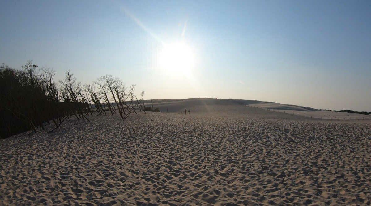 Отдых на Балтике_песчаные дюны-2