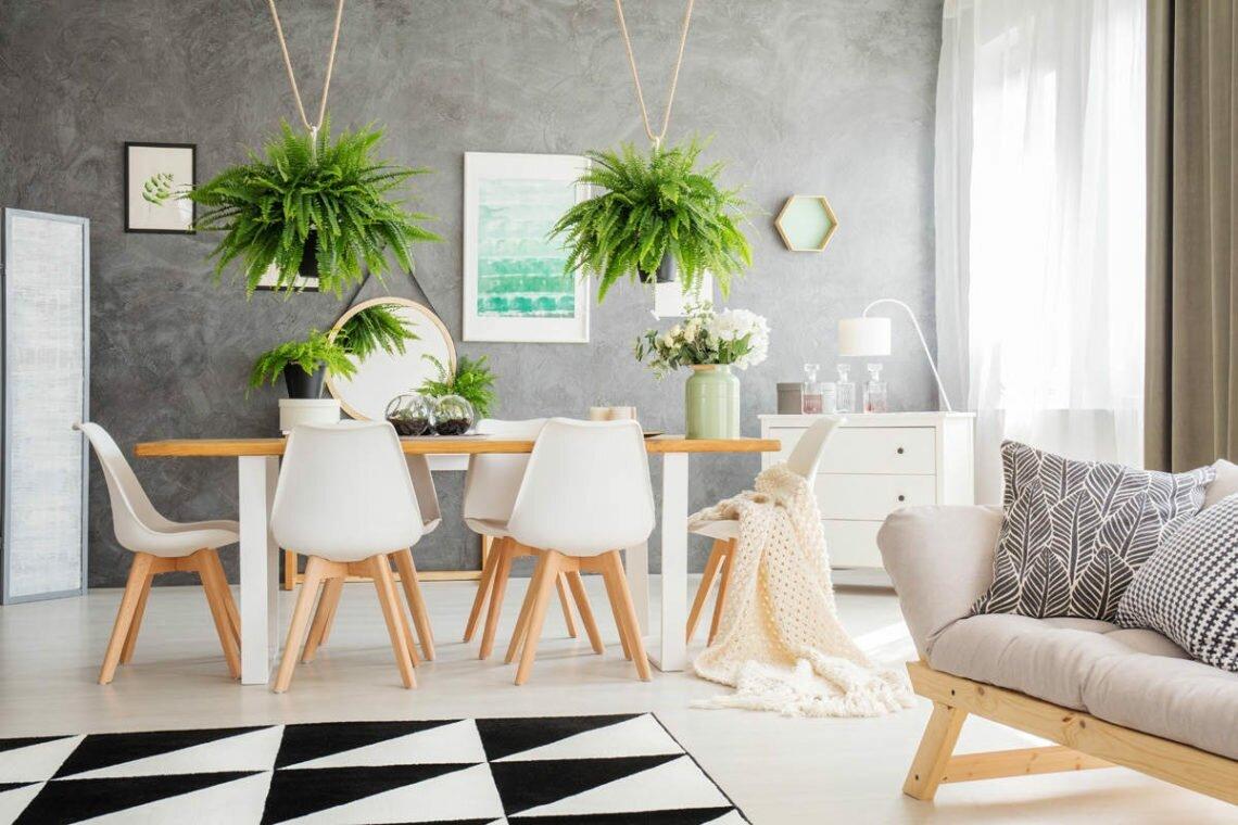 Самые популярные растения в интерьере дома